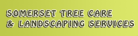 Somerset Tree Care